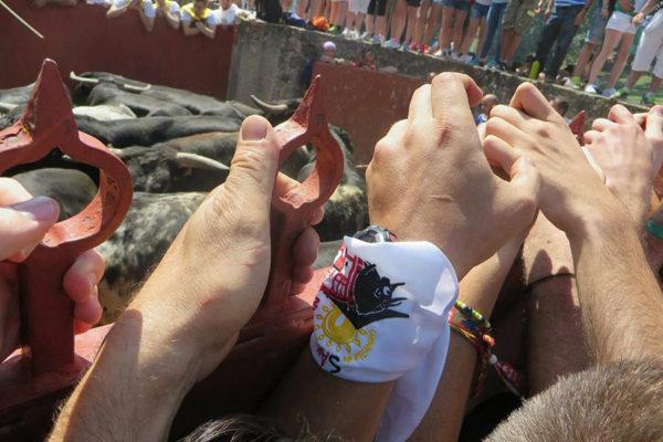 Felices Fiestas de San Juan