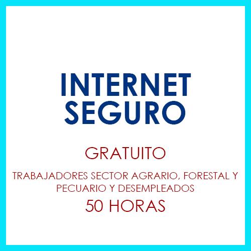 Curso Internet Seguro Soria